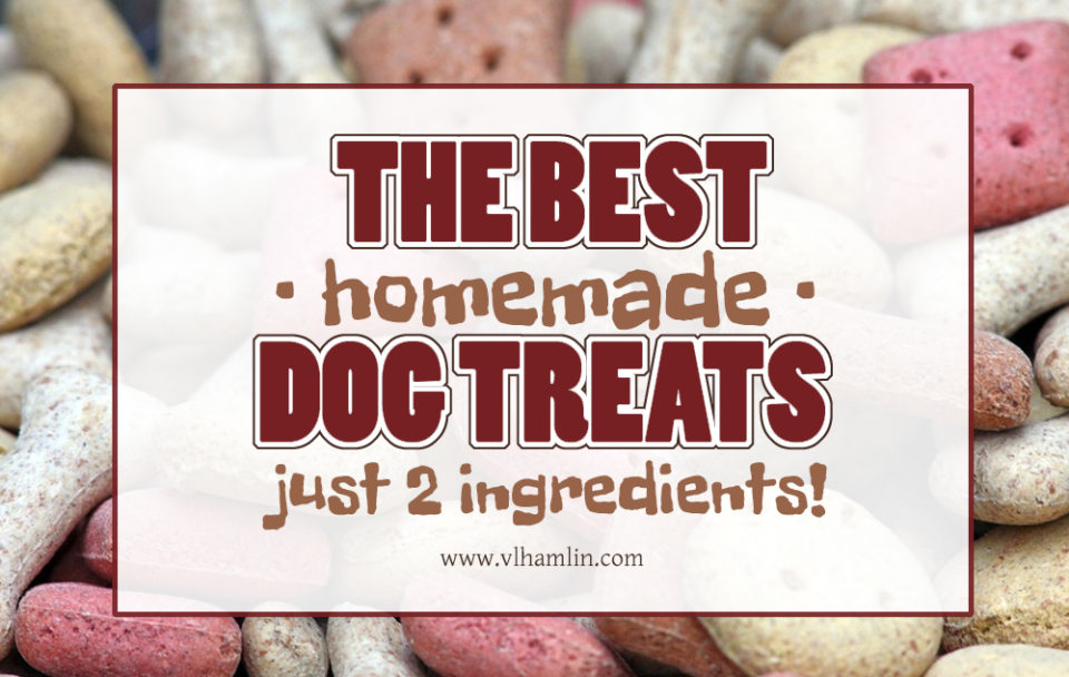 The Best Homemade Dog Treats - Just 2 Ingredients!