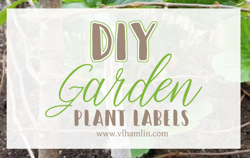 DIY Garden Plant Labels