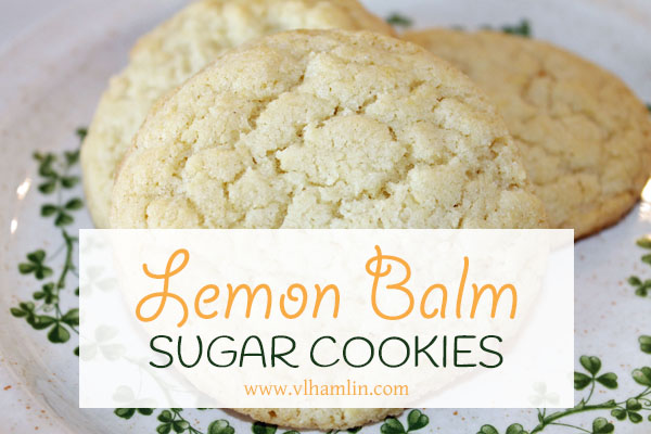 Lemon Balm Sugar Cookies