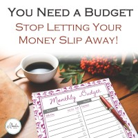 You Need a Budget - Stop Letting Your Money Slip Away