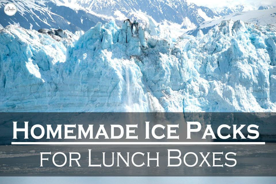 Homemade Ice Packs for Lunch Boxes