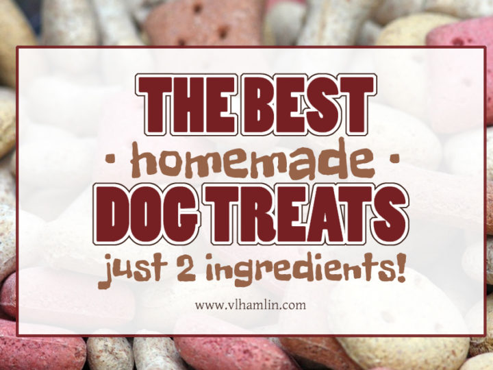 The Best Homemade Dog Treats Just 2 Ingredients Food Life Design