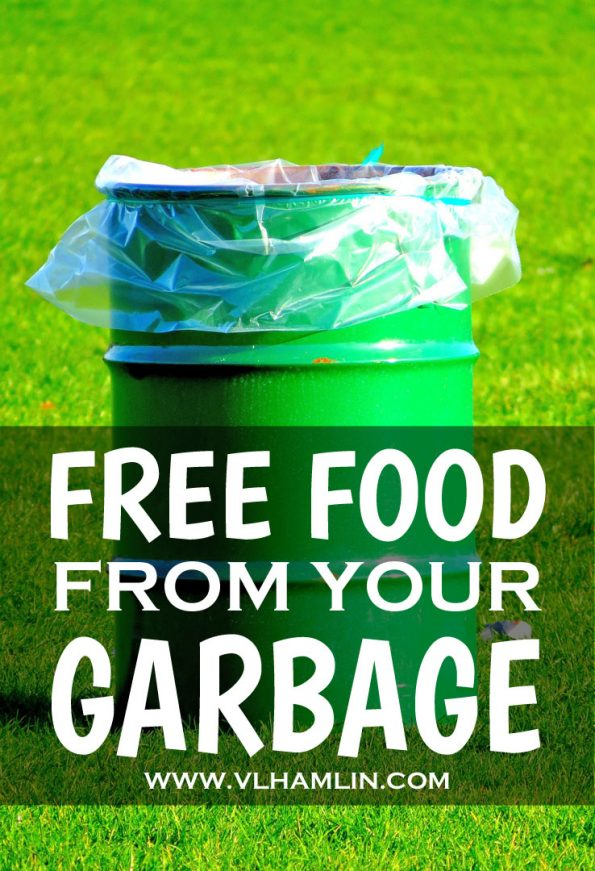 FREE FOOD FROM YOUR GARBAGE