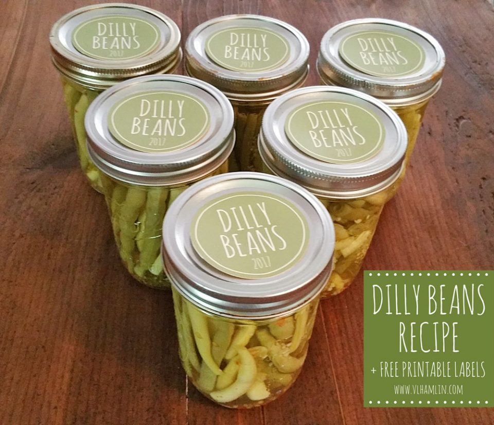 Pickled Green Beans AKA Dilly Beans - 1