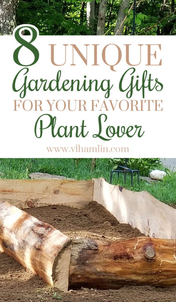 Unique Gardening Gifts for Your Favorite Plant Lover | Food Life Design