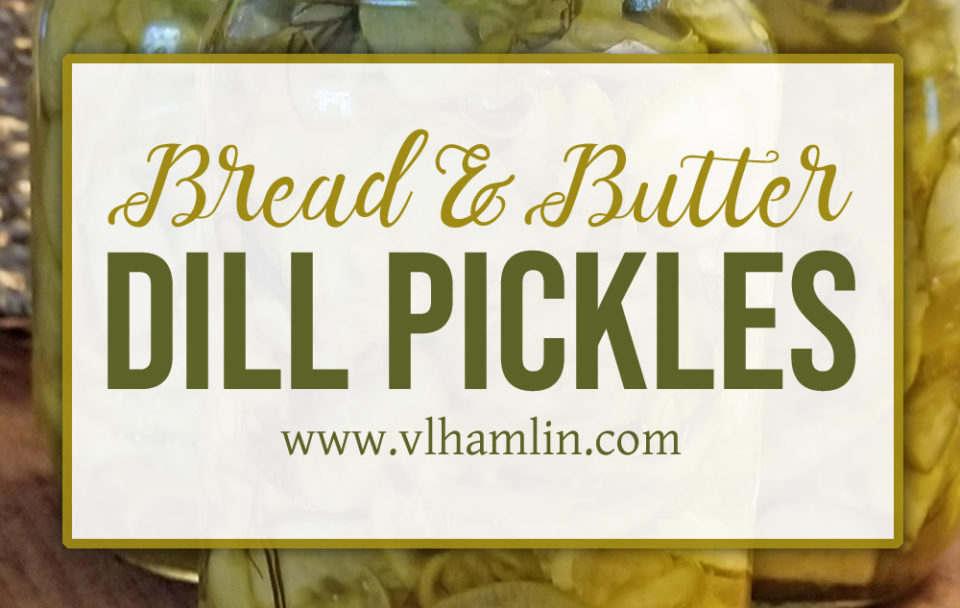 Bread and Butter Dill Pickles - FEATURED