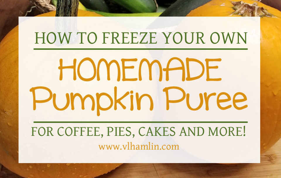 How To Freeze Your Own Pumpkin Puree - FEATURED