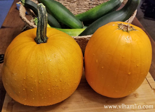 How To Freeze Your Own Pumpkin Puree - Step 1