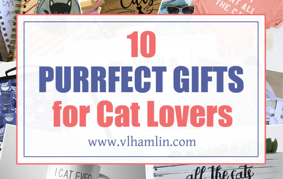 10 Purrfect Gifts for Cat Lovers