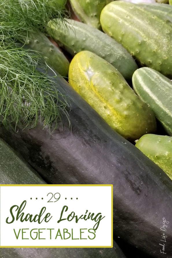29 Shade Loving Vegetables - Food Life Design