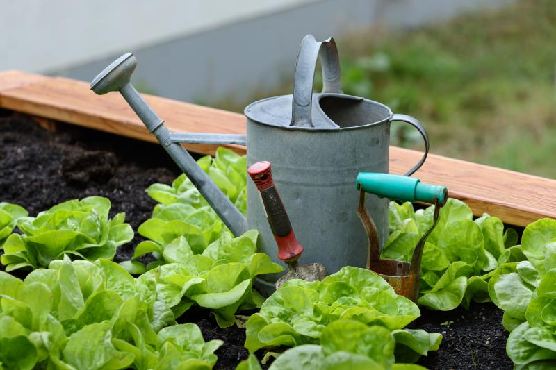 Gardening   Seasonal Work